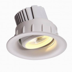 Downlight Chease & Bread orientable 42W Super warmwhite ø195 mm / enc 180mm